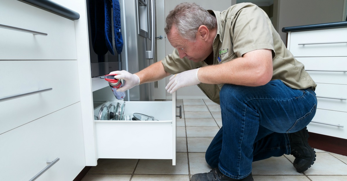 pest control service at home